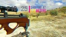 P10 long range testing cal.25 ( 213 meters ) best video