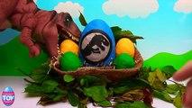 Jurassic World DINOSAUR Surprise Egg with Rex the T Rex Dino STF
