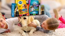 Pet Food Confusion: 3 Tips to Save Some Cash