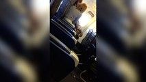 Mais que fait ce couple dans l'avion ?