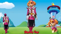 Paw Patrol Transforms into Power Rangers Fun Videos For Kids with Nursery Rhymes Songs