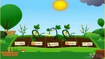 Growing Plants & Vegetables Funny Video For Children, Planting Seeds of Сhange