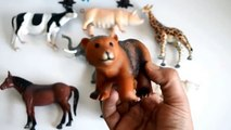 Learn Names And Sounds of Animals-Wild Zoo And Farm Animal-Kids Z Fun-Education Preschool Learning