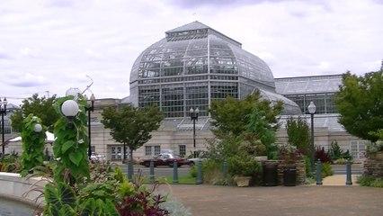 Debes conocer el jardín botánico de Washington DC