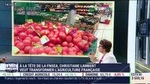 Christiane Lambert, FNSEA - 28/09 (1/2)