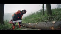 TBWA Corporate pour France Bois Forêt - «Pour moi, c'est le bois» - septembre 2017