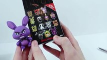 Five Nights at Freddys Funko Mystery Mini Blind Boxes Opening