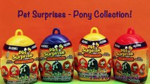 Pet Surprise Toys Eggs Opening Unboxing Review Pony MLP My Little Pony Collector Huevas Sorpresa Toy
