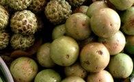 Amazing Street Fruit, Khmer Street Fruit, Asian Street Fruit, Cambodian Street Fruit #19