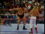 BIG JOHN STUDD VS ANDRE THE GIANT (1989) - WWF WWE Wrestling - Sports MMA Mixed Martial Arts Entertainment