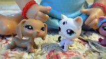 Baby Alive Molly Has Her Toys STOLEN! - Who took Mollys Littlest Pet Shop Toys?