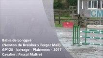 Bahia de longpré (Newton de Kreisker x Fergar Mail) GP120 barrage Plabennec sept 2017