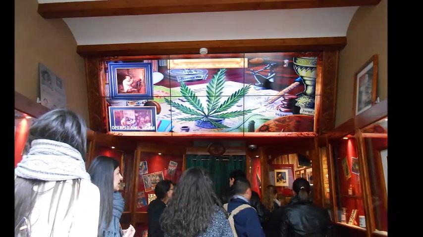 Amsterdam, Cannabis Information, Plants, Hash, Marijuana, Hemp Museum, The Netherlands