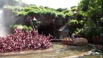 Splash Mountain POV Log Flume Water Ride Tokyo Disneyland Japan 1080p HD