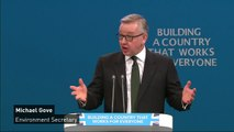 Gove claims Conservative Party is most ambitious green party