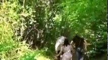 مسلسل مصير اسية - الحلقة 249 مقطع 2 - maser asiya Ep 249 full #ser2M