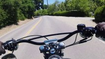 Custom Harley-Davidson Dyna Street Bob