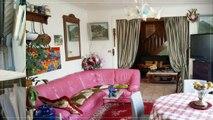 A vendre - Maison - SANNOIS (95110) - 6 pièces - 180m²