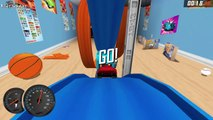 Hot Wheels Sports Car - NEW Track, NEW Racer | Hot Wheels :The Best Car, Track - Video For KIDS