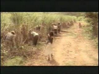 Hasta Siempre Comandante Che Guevara - Nathalie Cardone