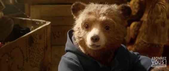 Paddington 2  Film  International Full Movies