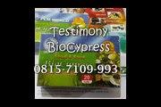 0815-7109-993 | Jual BioCypress Binjai, Pengobatan Penyakit Asam Urat