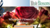 Wholesale Flowers for Weddings - www.wholeblossoms.com