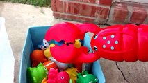 Learn Names of Sea Animals with Bath toys-Playing in Water,Making Bubbles-Funny Lobster Claws-Kids