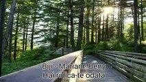 FRATII DIN BARBULESTI ~ BIJI - BENY - MARIAN - MARY [DEMO ALBUM 2016]