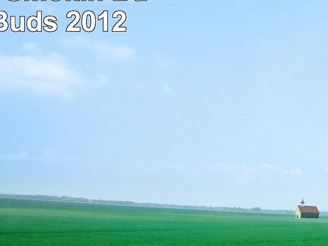 Skullcandy Smokin Buds InEar Buds 2012