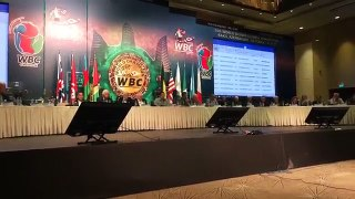 WBC Orders mikey Garcia vs Jorge Linares-qB5VlepjM1o