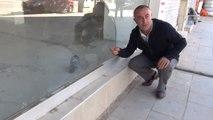 Boş Dükkanda Mahsur Kalan Güvercini Kırık Camların Arasından Su Vererek Hayatta Tutmaya Çalışıyor