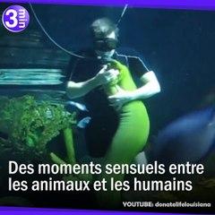 Des moments de tendresse entre des hommes et des animaux
