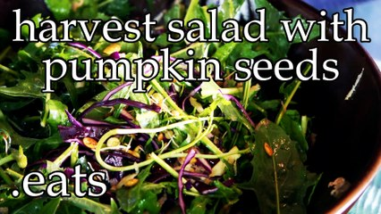 Chef Micheal's Kitchen - Harvest Salad with Pumpkin Seeds