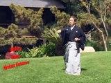 Shotokan Karate Kanazawa Mastering Karate 04 Kyu Kata [Part 1]