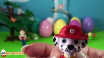 Paw Patrol 12 Surprise Eggs Toy Figures | Ryder Chase Rubble Marshall Zuma Rocky Skye & Vehicles