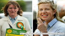 Plaid Cymru is bigot! Gathering of people part fires back as Ukip is marked gathering of hooligans