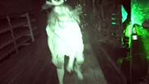 Lullaby: Hush Hush Dont Cry with Night Vision – Queen Mary Dark Harbor 2016 Queen Mary