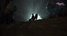 Maurienne Reportage # 110 La Grande Odyssée Savoie Mont Blanc 2018