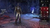 Стоит ли покупать? - The Elder Scrolls Online (TESO/ESO)
