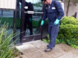 pest control in chennai,pest control services in chennai,pest control treatment in chennai, list of pest control service