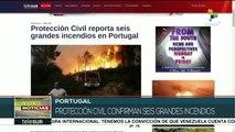 Registran seis incendios forestales en Portugal