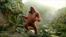 Funny Ape Song Cartoon Parody Dance Music Pop Songs Dancing Gorilla Kids Cartoons movies 2017