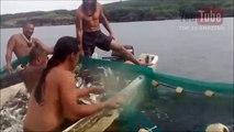 Top 10 Amazing Fishing Videos Cast Net Fishing - Big Catch Fish Around The World