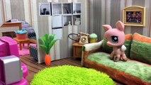 Azra ve Zümranın Maceraları 3.Bölüm - Minişler Cupcake Tv - Littlest Pet Shop -LPS Minişler Türkçe