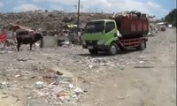 Keren! Pemkot Semarang Ubah Sampah Jadi Listrik