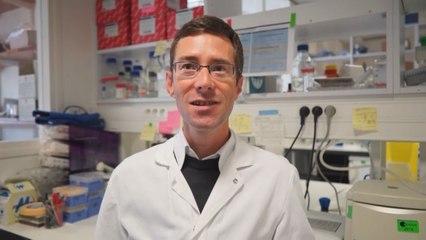 Il était une fois... la Vie - Laurent Chatre, chercheur CNRS à l' Institut Pasteur