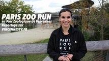 PARIS ZOO RUN au Parc Zoologique de Vincennes une expérience unique pour courir parmi les animaux.