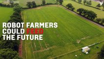 Robots And Drones Harvested The World's First Autonomously-Farmed Crop