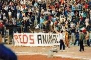 Heysel 1985 Reds Animals